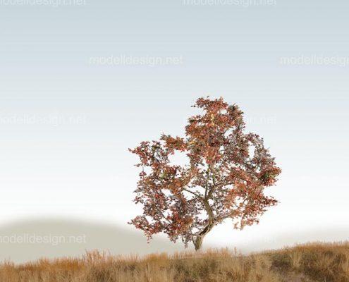 Modellbaum strauchig Laubbaum rotbraun