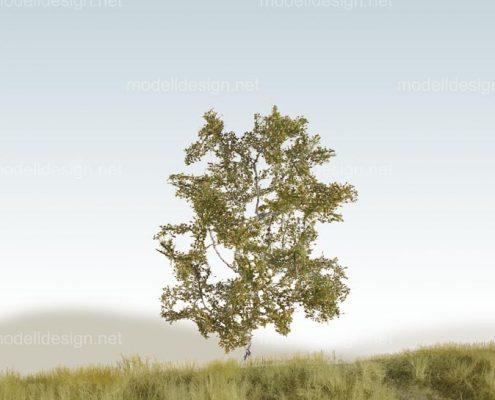 Modellbaum strauchig Birke sommer