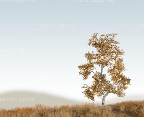 Modellbaum strauchig Birke herbst