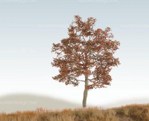 Modellbaum breit Buche herbst