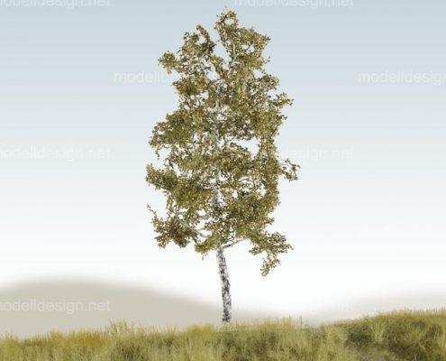 Modellbaum schmal Birke sommer