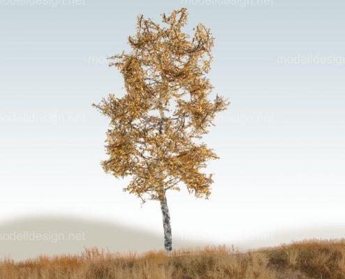Modellbaum schmal Birke herbst