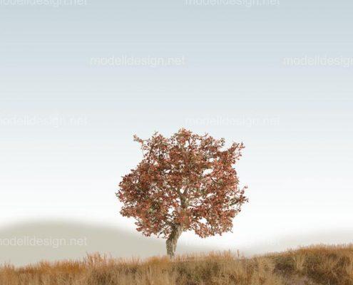 Modellbaum breit Obstbaum rotbraun