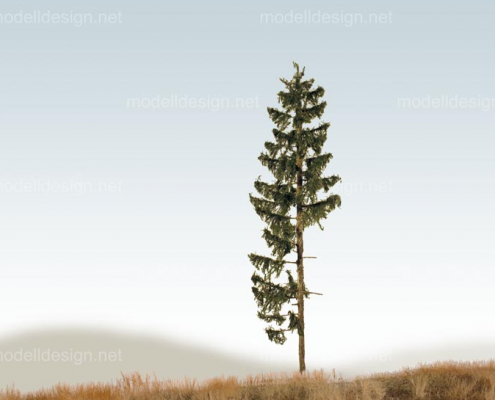 Modellbaum classic serie Fichte asymmetrisch
