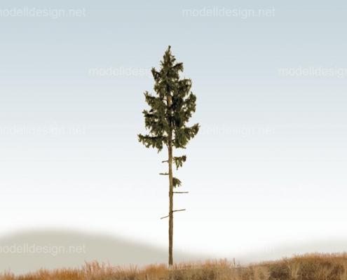 Modellbaum classic serie Fichte hochstaemmig