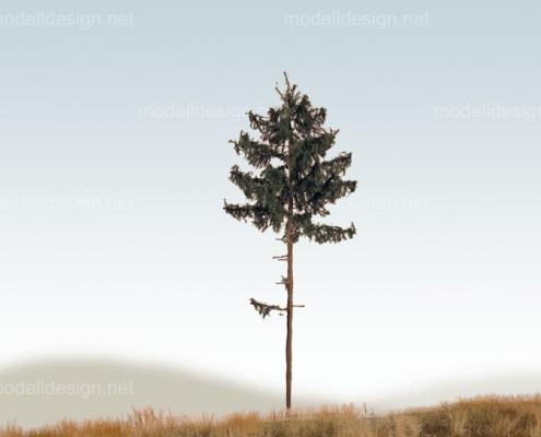 Modellbaum classic serie Tanne hochstaemmig