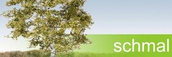 Laubbäume schmal